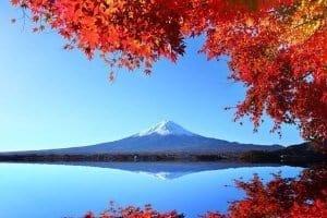 Koyo Mont Fuji